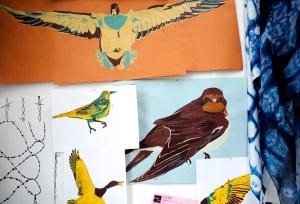 jakes Birds